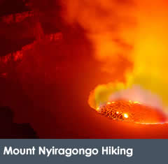 5 Days Nyiragongo Hike & Gorillas