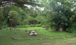 campsite in semuliki national park