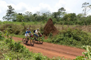 Mountain Biking in Mabira Forest nbsp» Inspire African Safaris